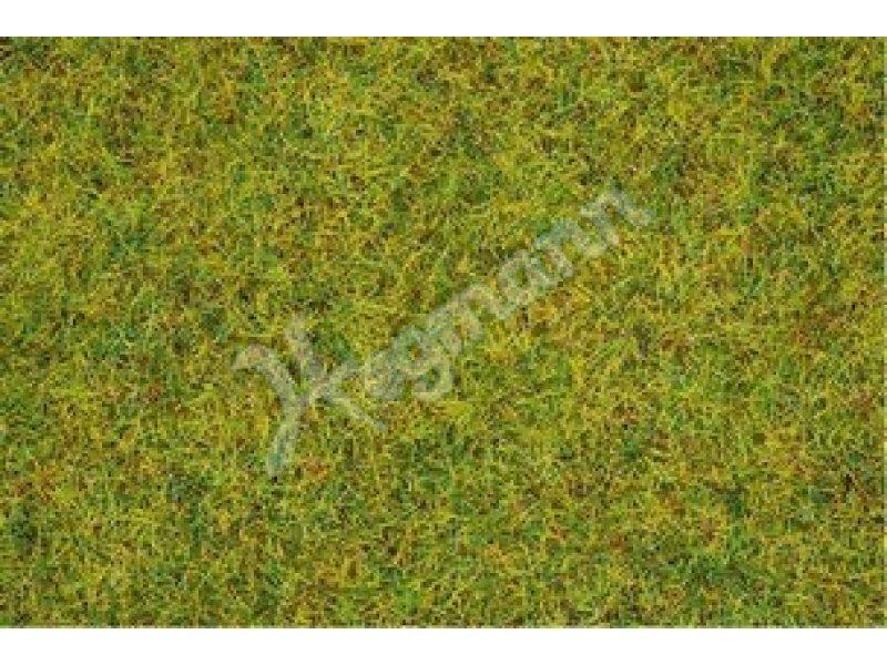 Noch Gras Sommerweise 2,5mm 08151